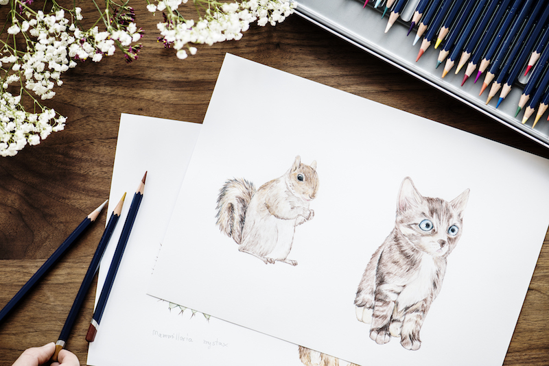 illustrating your own children's book, children's book illustrations